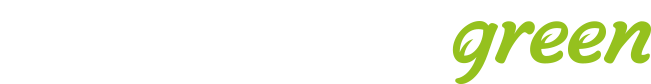 Florida Eis Logo