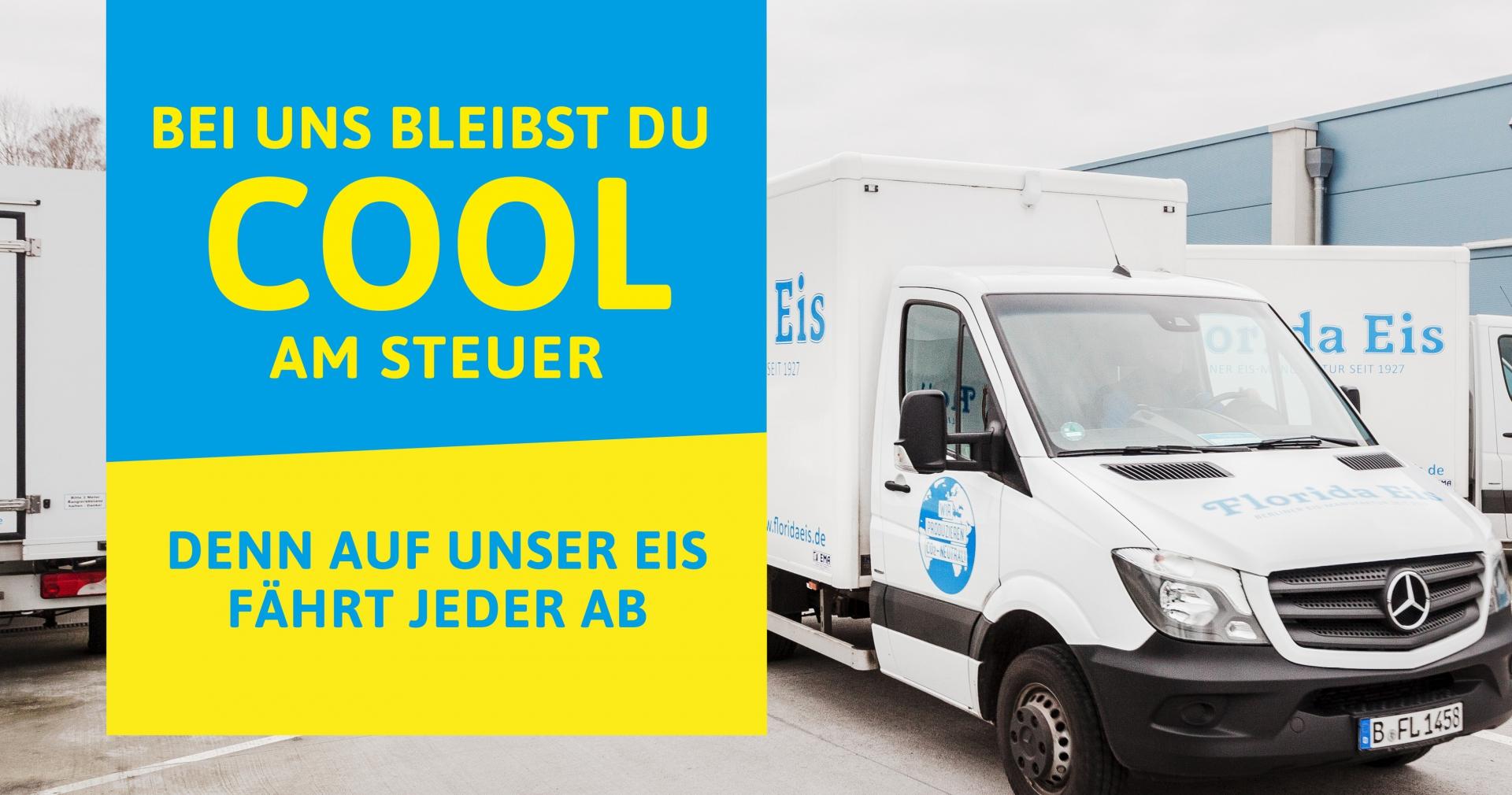 Lieferfahrer / Auslieferungsfahrer – Deutschlandweit (m/w/d)
